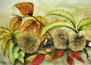 毬栗と彩紅葉