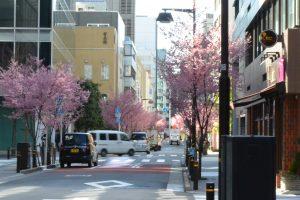 日本橋の早春